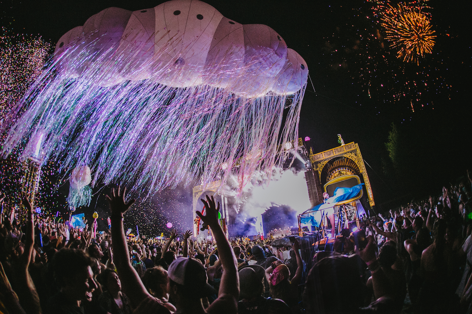 Electric Forest3.jpg