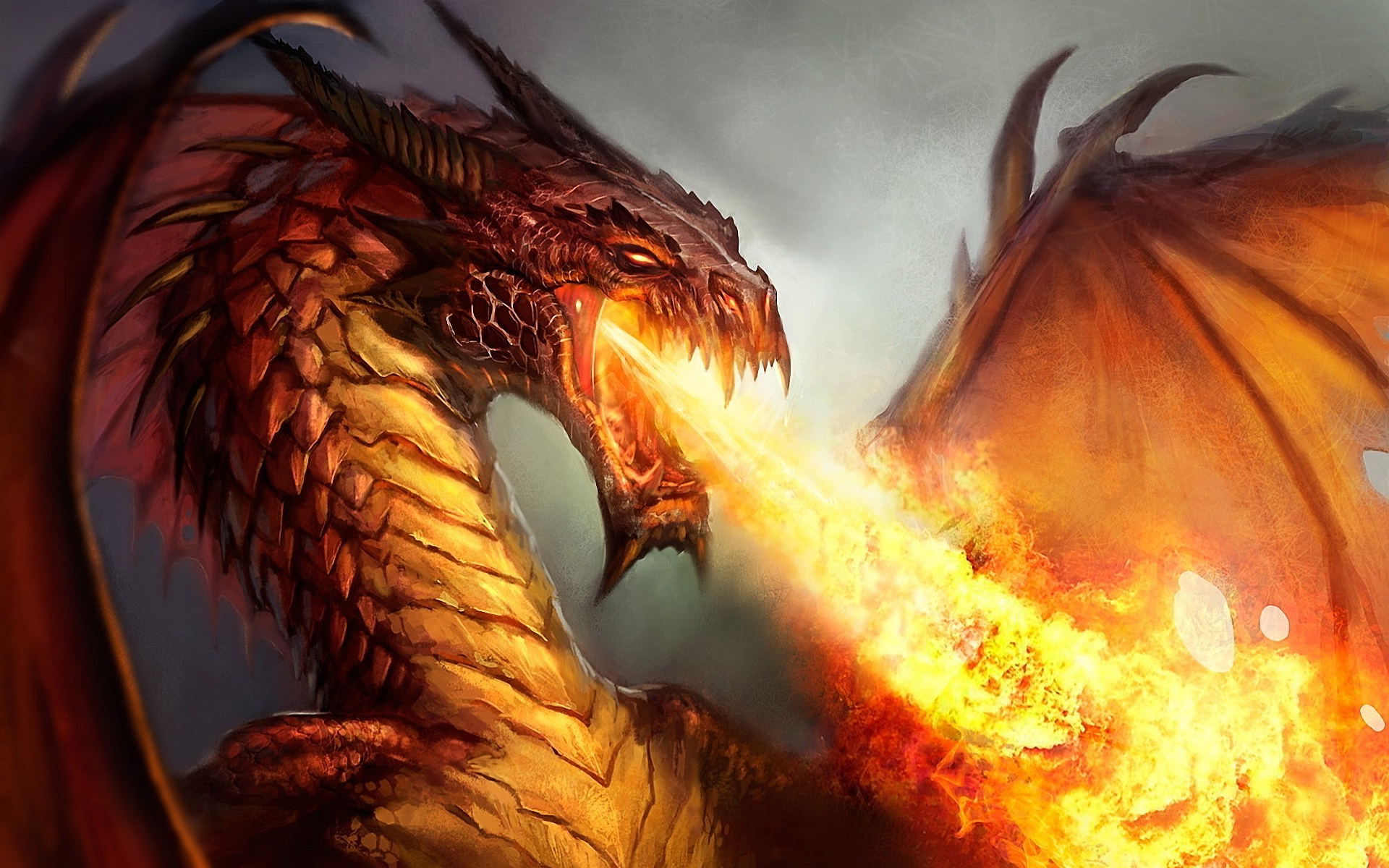 photo_purpose_and_play_lucid_living_ledger_balazs_laszlo_karafiath_face_your_dragon.jpeg