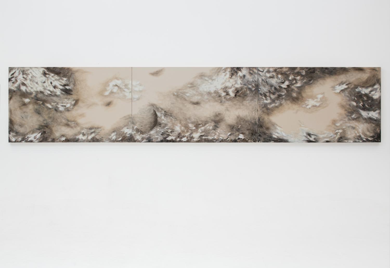 Terra Overall, 2015.jpg