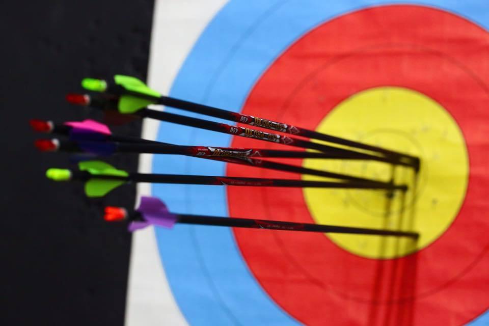 Leo-pro10-carbon-target-arrows.jpg