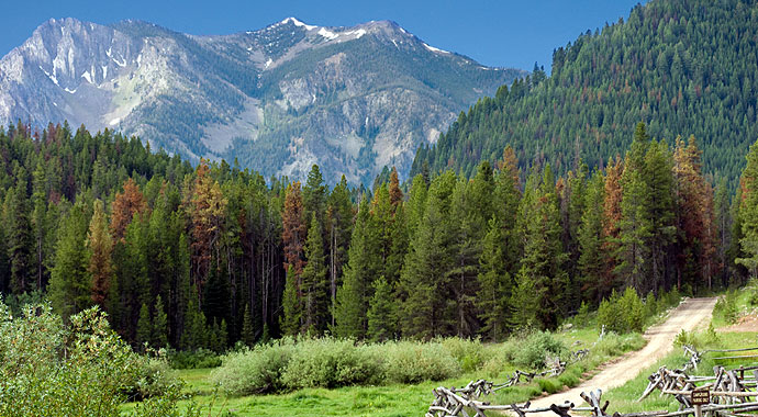690x380-Sun-Valley-Summer-Scenic-Mountain.jpg
