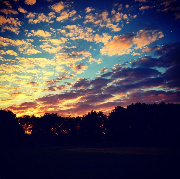 """"""" There is so much joy in remembering to look up."""" 
