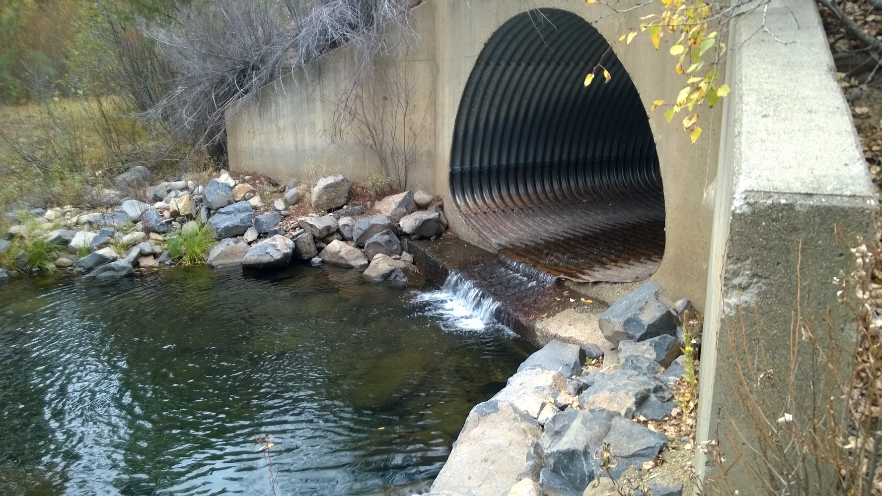 An excavated pool on Upper Indian Creek, above Antelope Lake, created to aid the passage of spawning wild trout that migrate up from the lake; many road crossings and other culverts across the watershed are still in need of retrofit to allow such passage.