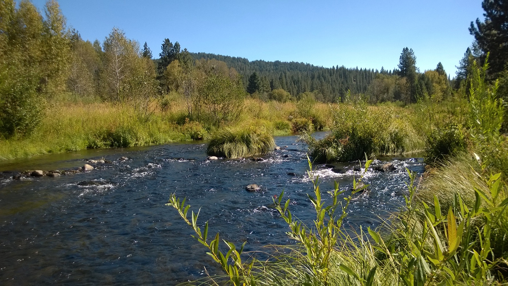The Middle Fork Feather River near Graeagle- while much of the lower length of the Middle Fork is a designated Wild and Scenic River, some anglers believe that development and changing land use in the upstream reaches has negatively affected the fishery in those areas over recent years. Angling represents a valuable attractant for tourism in the area.