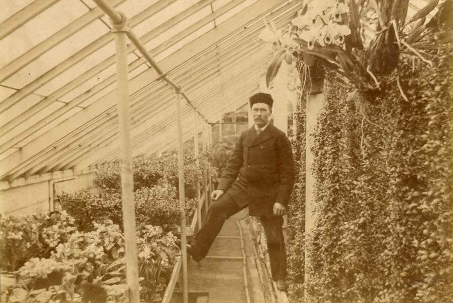 After leaving Sweden, August Swansons first settled in Minnesota, where he started Swanson's Land of Flowers in 1888.