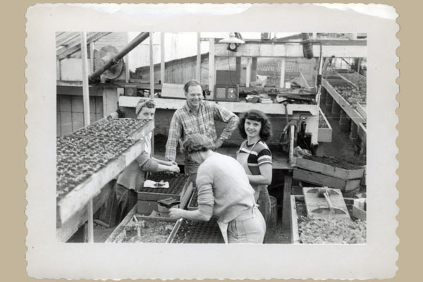 By the 1950s, Swanson's growing operation had increased enough to hire a few neighbors and friends.