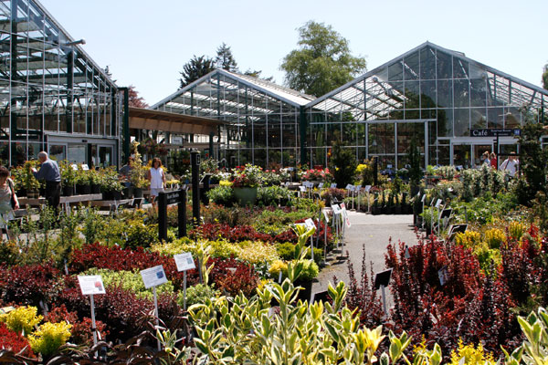 The Swansons' legacy continues today as an urban garden center dedicated to growing great gardeners.