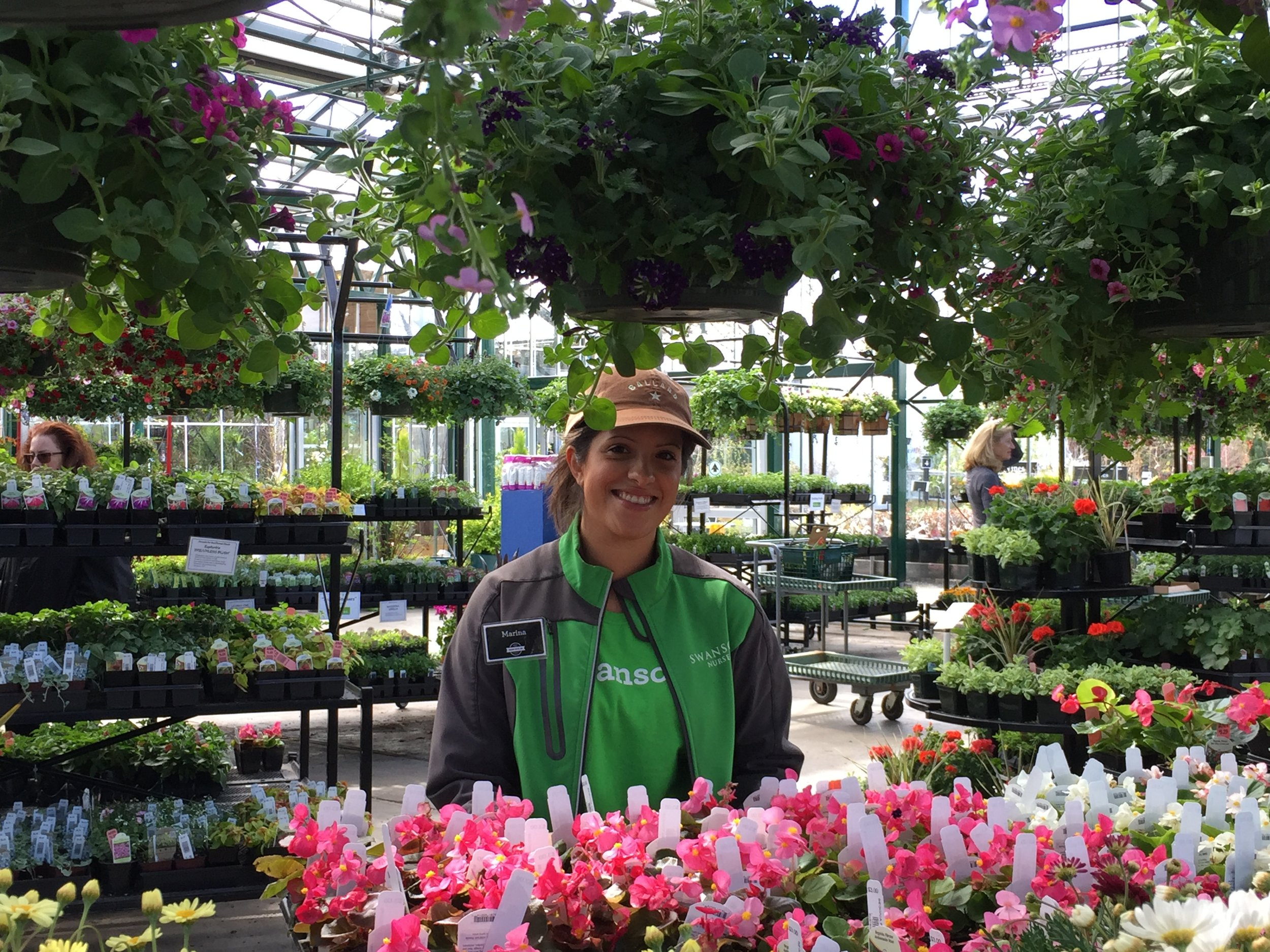 Marina finishing an annual flower display