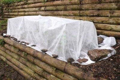 winter-protection-400x267_gardeningknowhow.jpg
