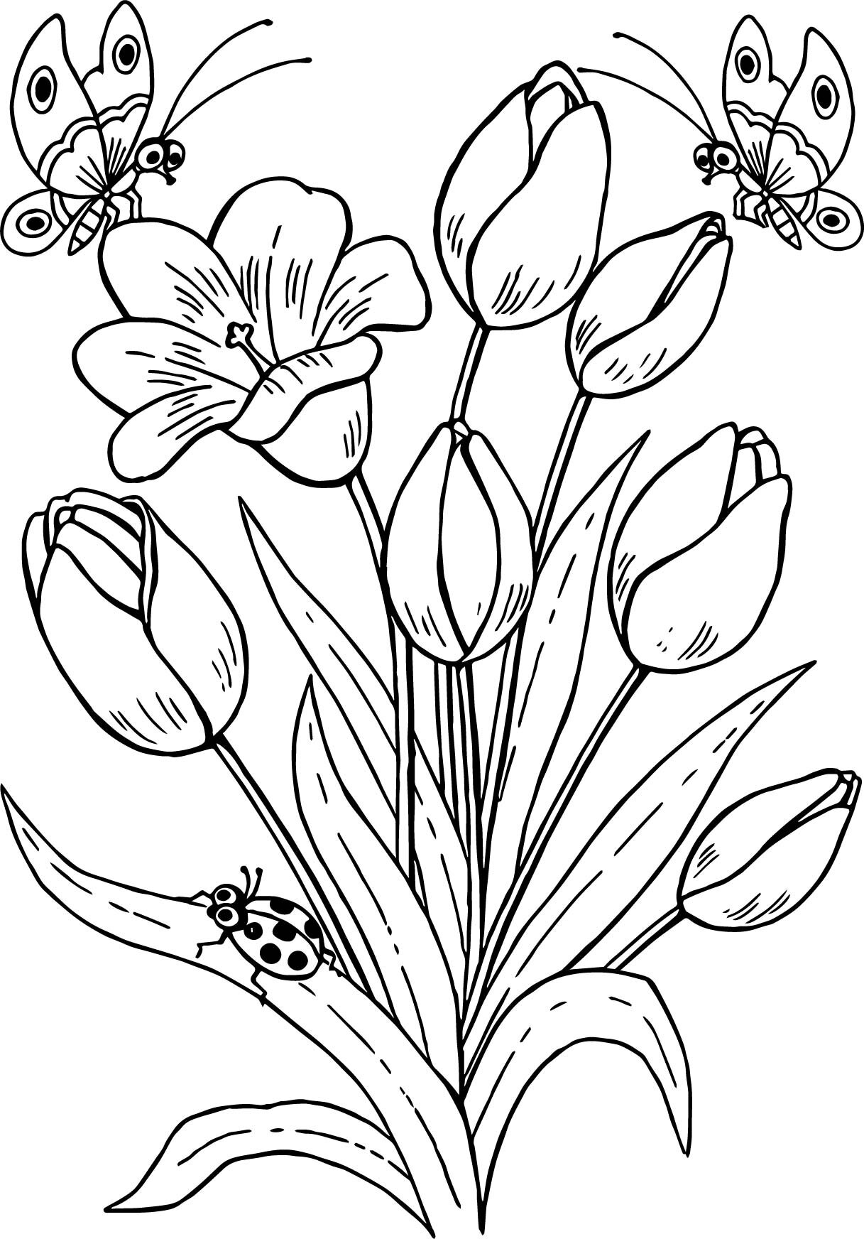 Pollinator Coloring Pages Seattle S Favorite Garden Store Since 1924 Swansons Nursery