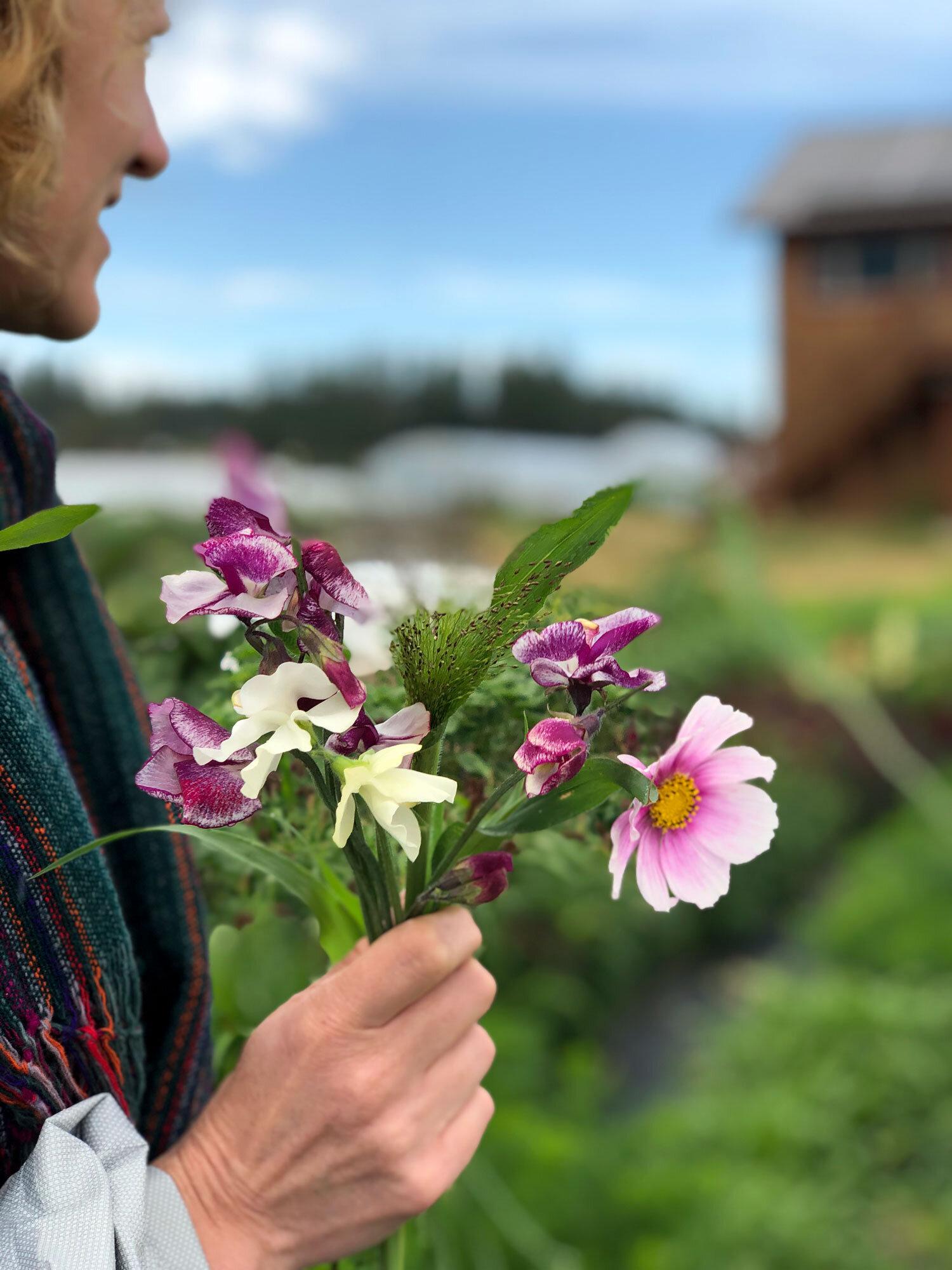 Impromptu hand-picked bouquet