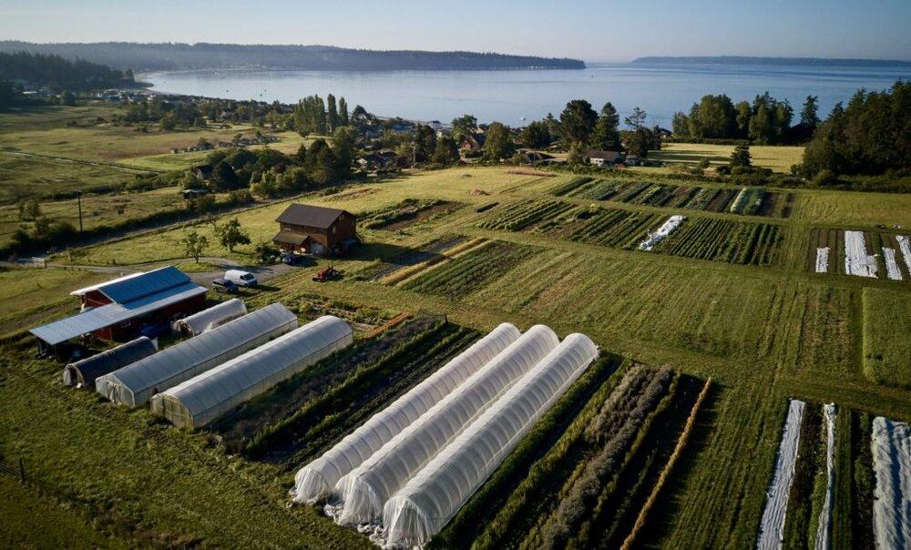Aerial photo of Deep Harvest Farm overlooking Mutiny Bay