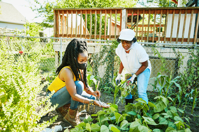 Nurturing Roots Farm in Seattle