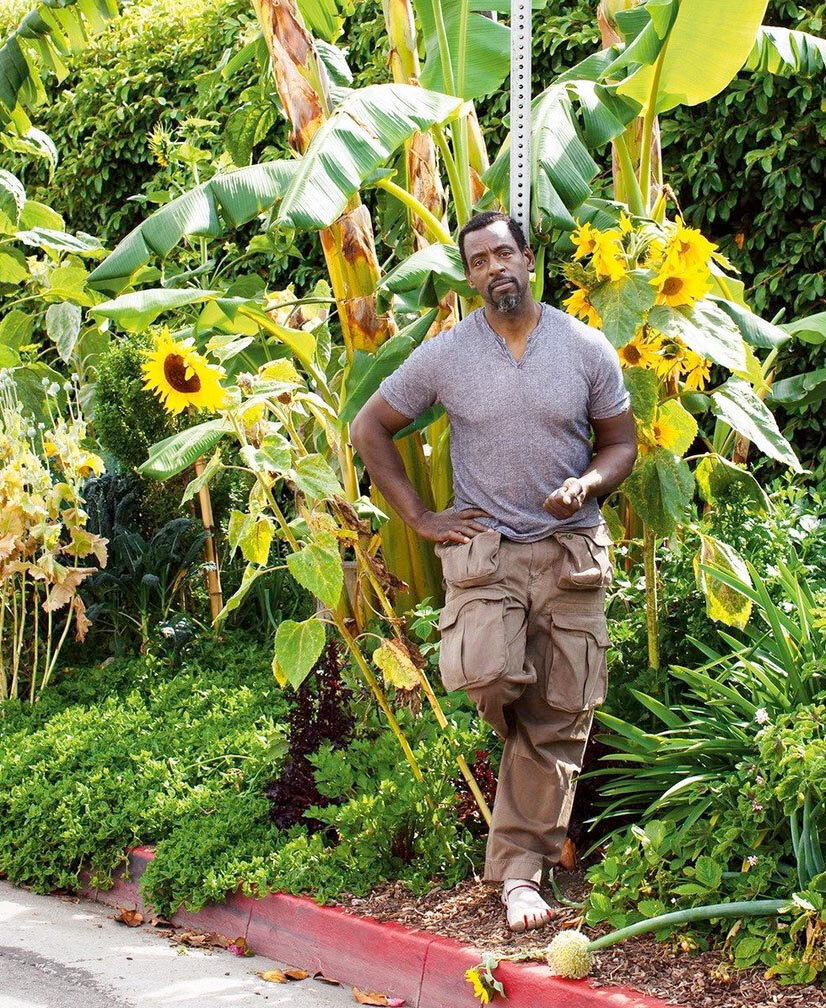 Ron Finley, growing food in South Central LA