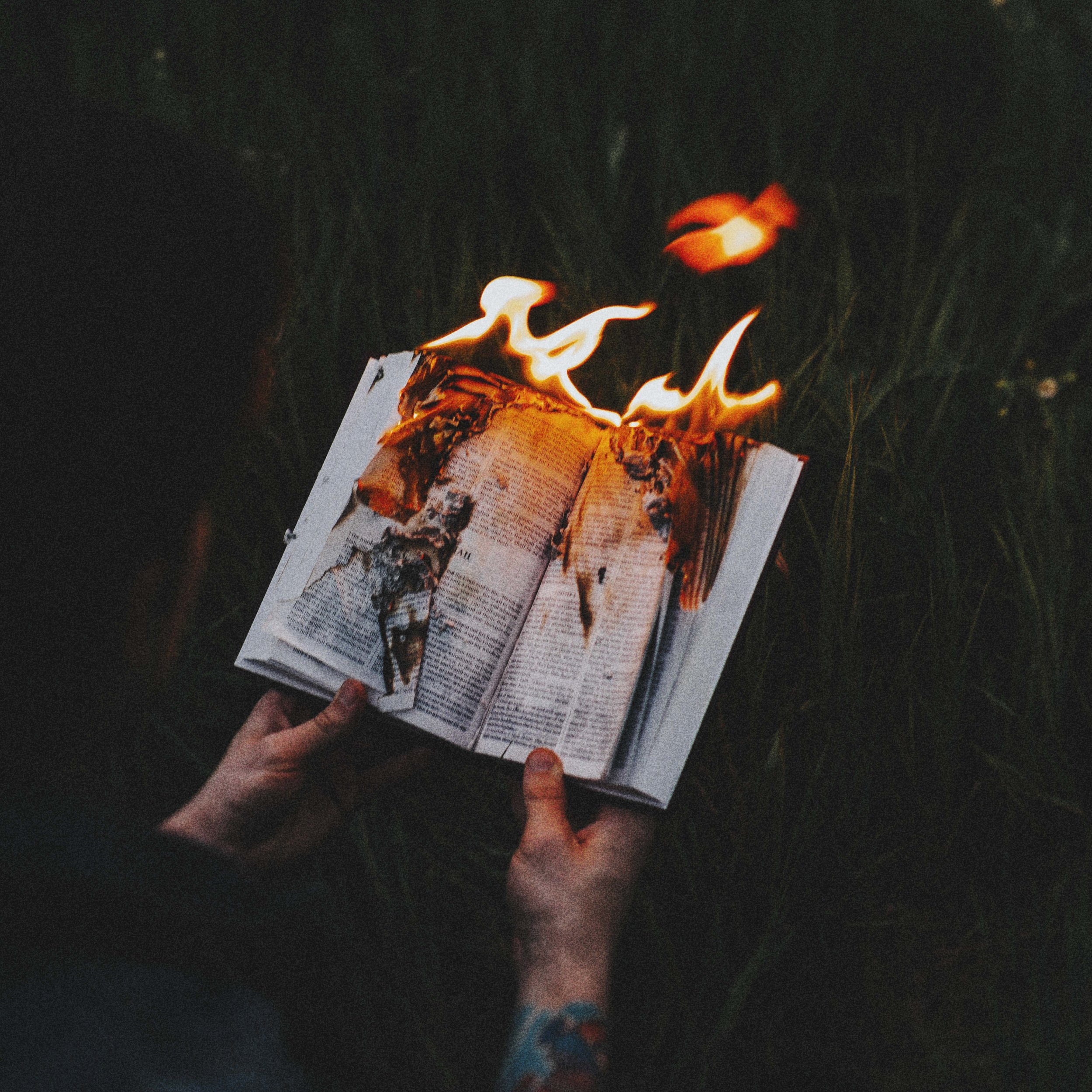 24. (Week 53) Josh Haider | Bible Burning [June 2016].jpg