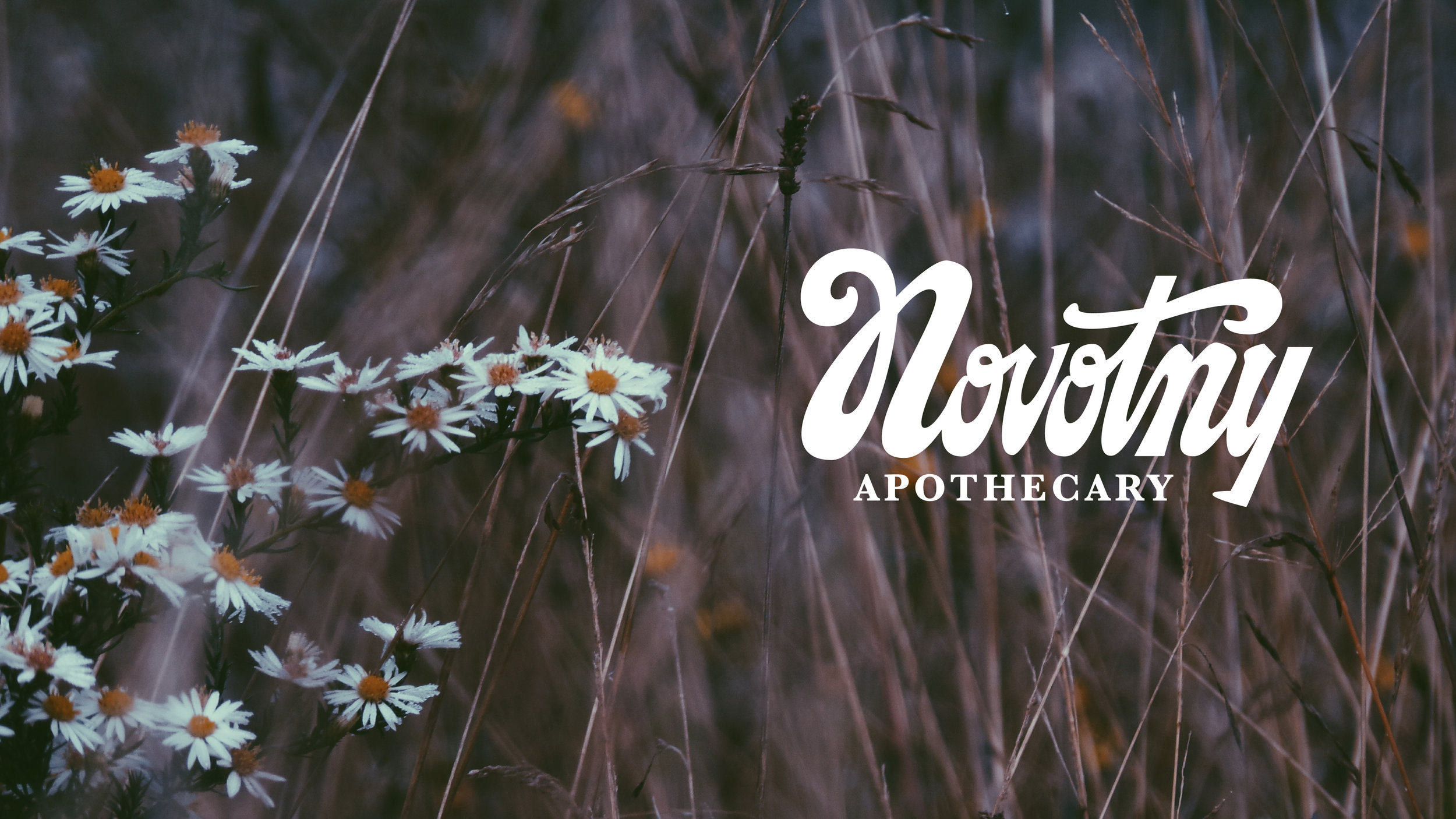 Hand-Lettered Logo Design for Novotny Apothecary