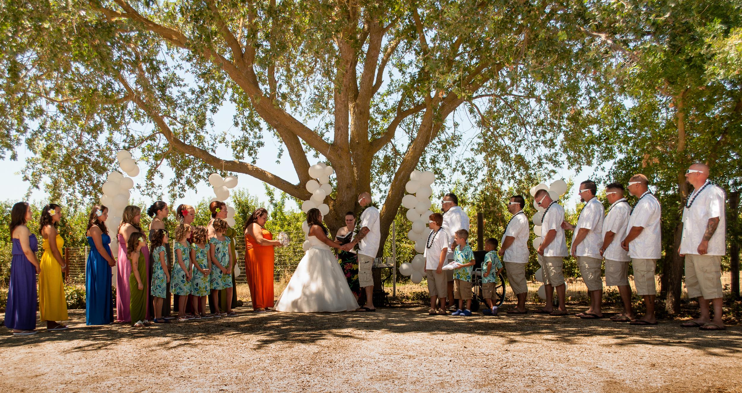 Wedding Gallery-3.jpg