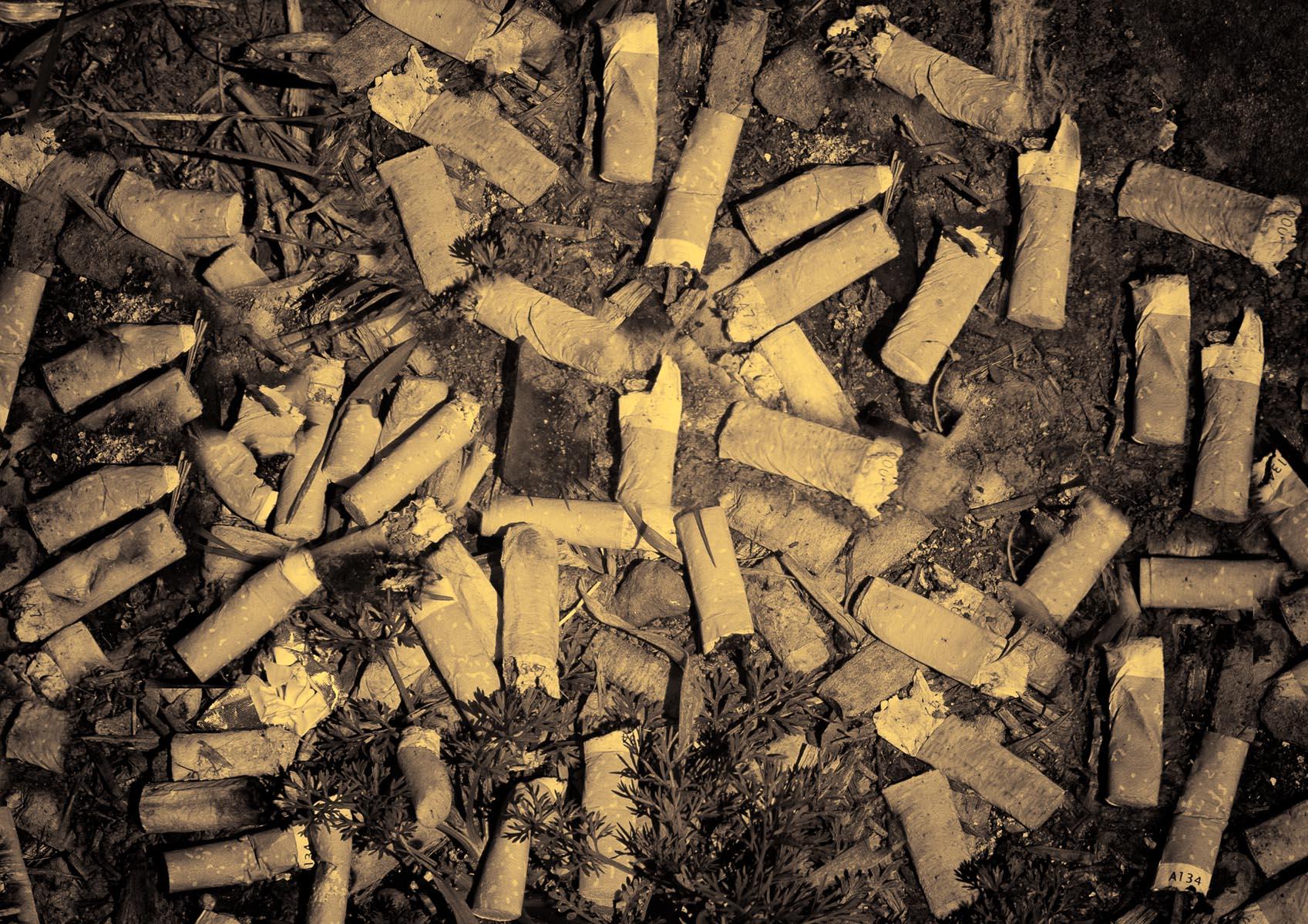 Smokin-115.jpg