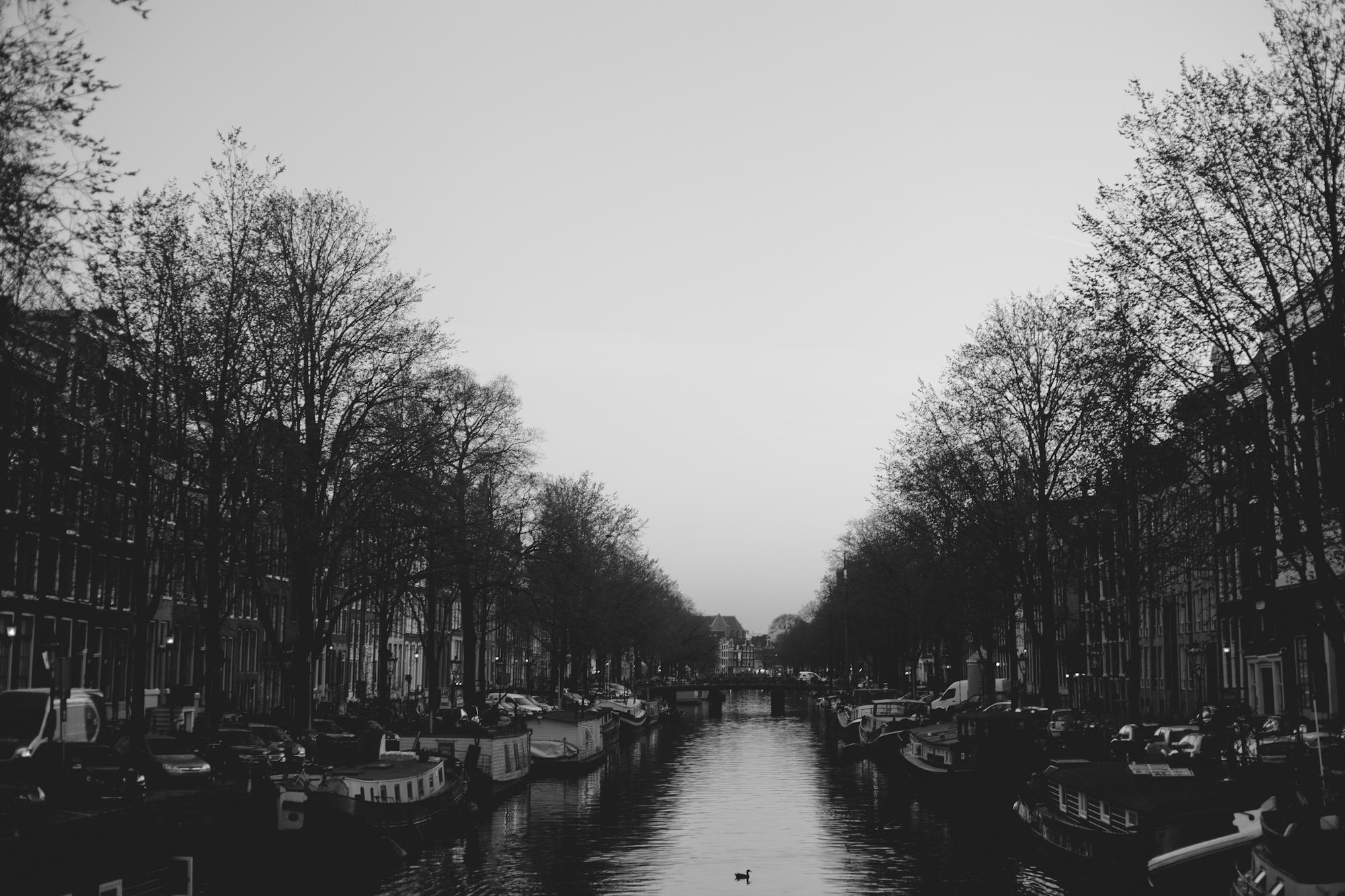 Amsterdam 2017-14.jpg