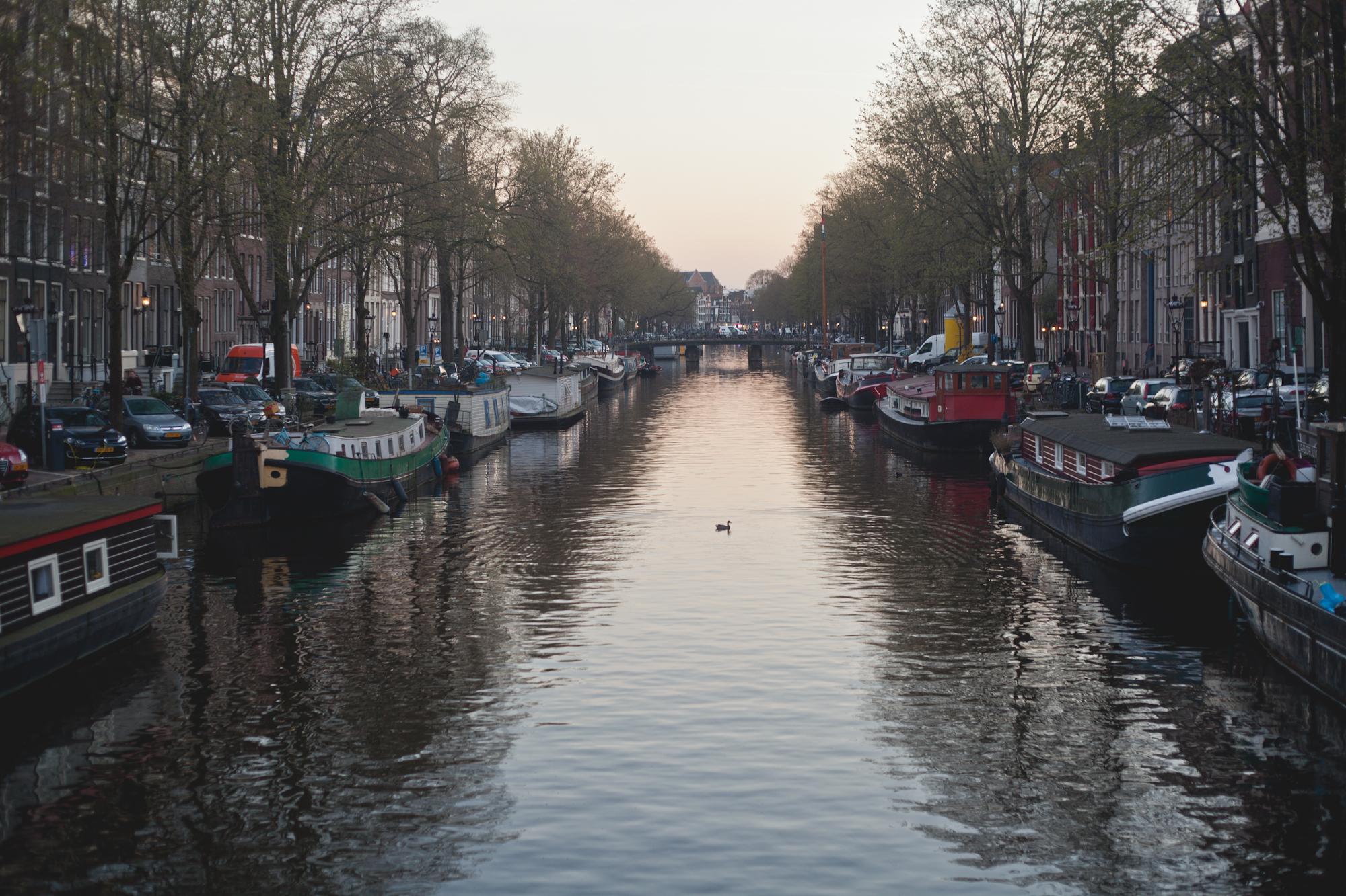 Amsterdam 2017-13.jpg