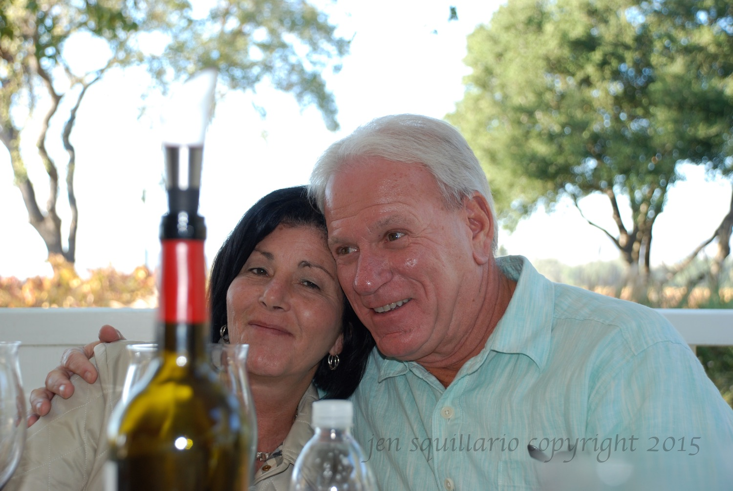 Lunch at a Winery (2008)