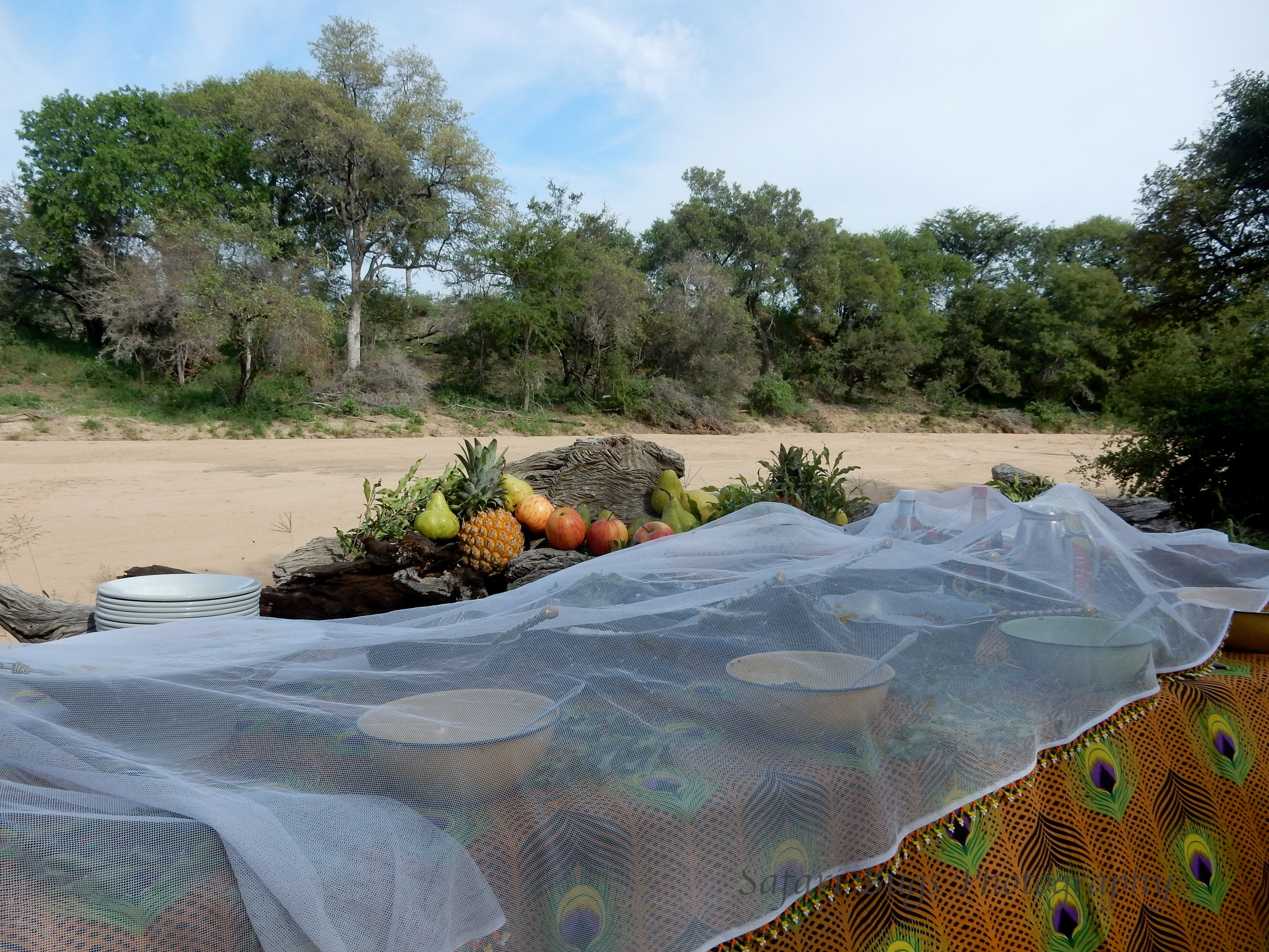 Bush Breakfast by the River Bed