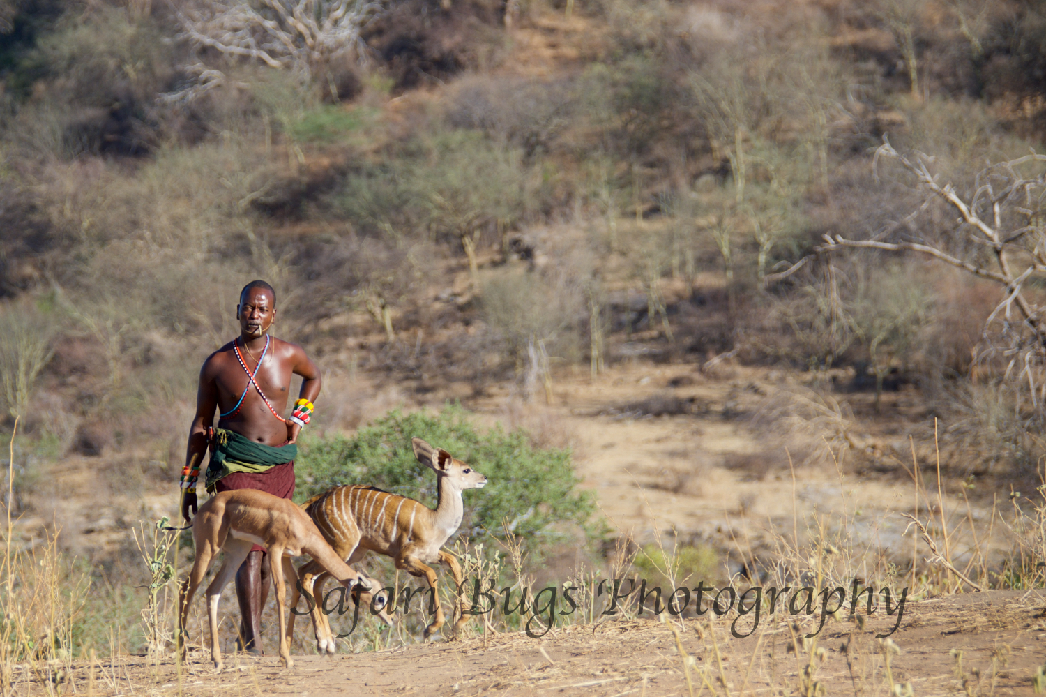 With the Baby Kudu and Gerenuk