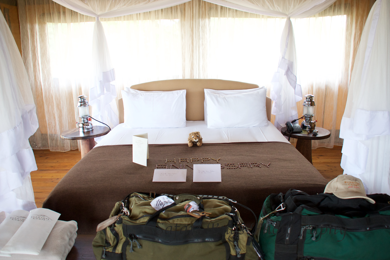 Safari Bugs Bushtops Camp (1).jpg