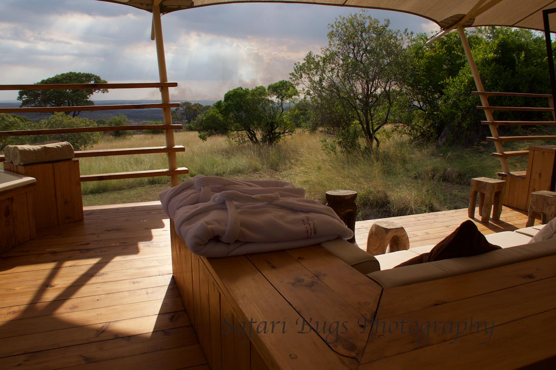 Safari Bugs Bushtops Camp (2).jpg