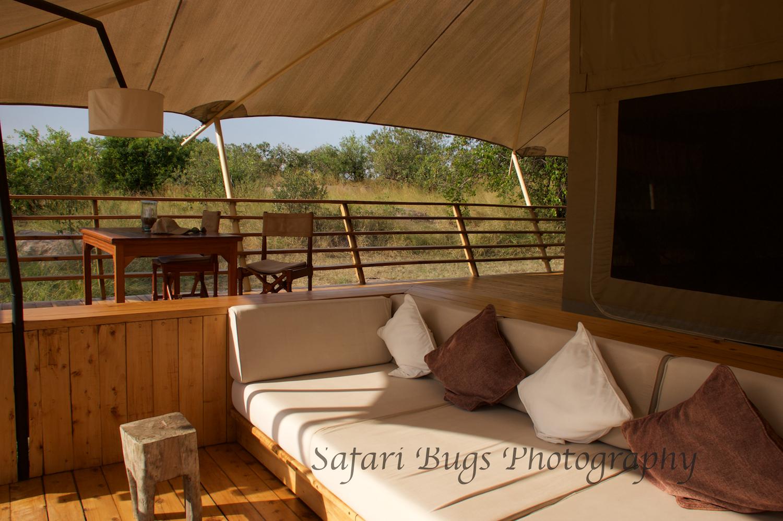 Safari Bugs Bushtops Camp (3).jpg
