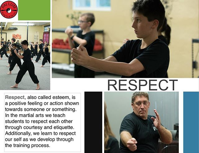 www.mbgkungfu.com #pailumcepa #pai #pailum #kungfu #martialarts #Wingchun #BruceLee #MMA #Taichi #karate #lifestyle #Shaolin  #kicks #selfdefense #fitness #blackbelt #zen #meditation #arnis #Kali #escrima #irondummy