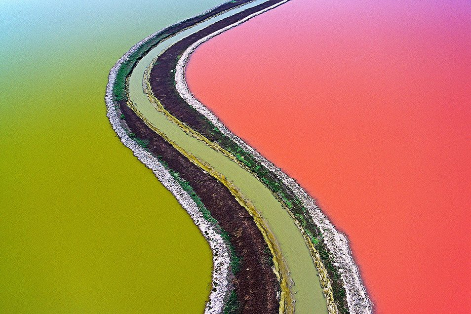 McRae, Colin. Rainbow Fields.