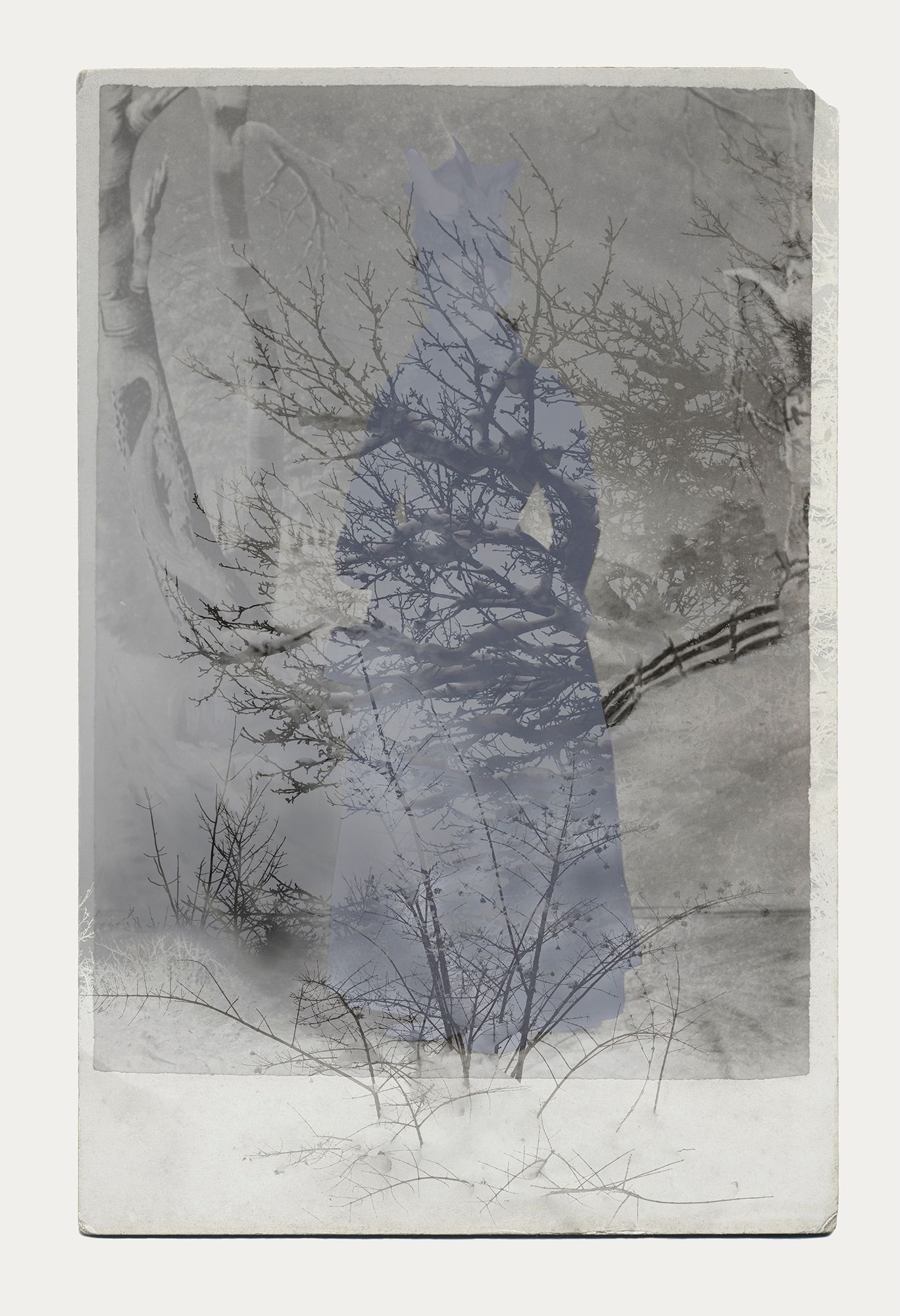 Woman/Winter/Forest. Inkjet print, 2016. Sara Angelucci