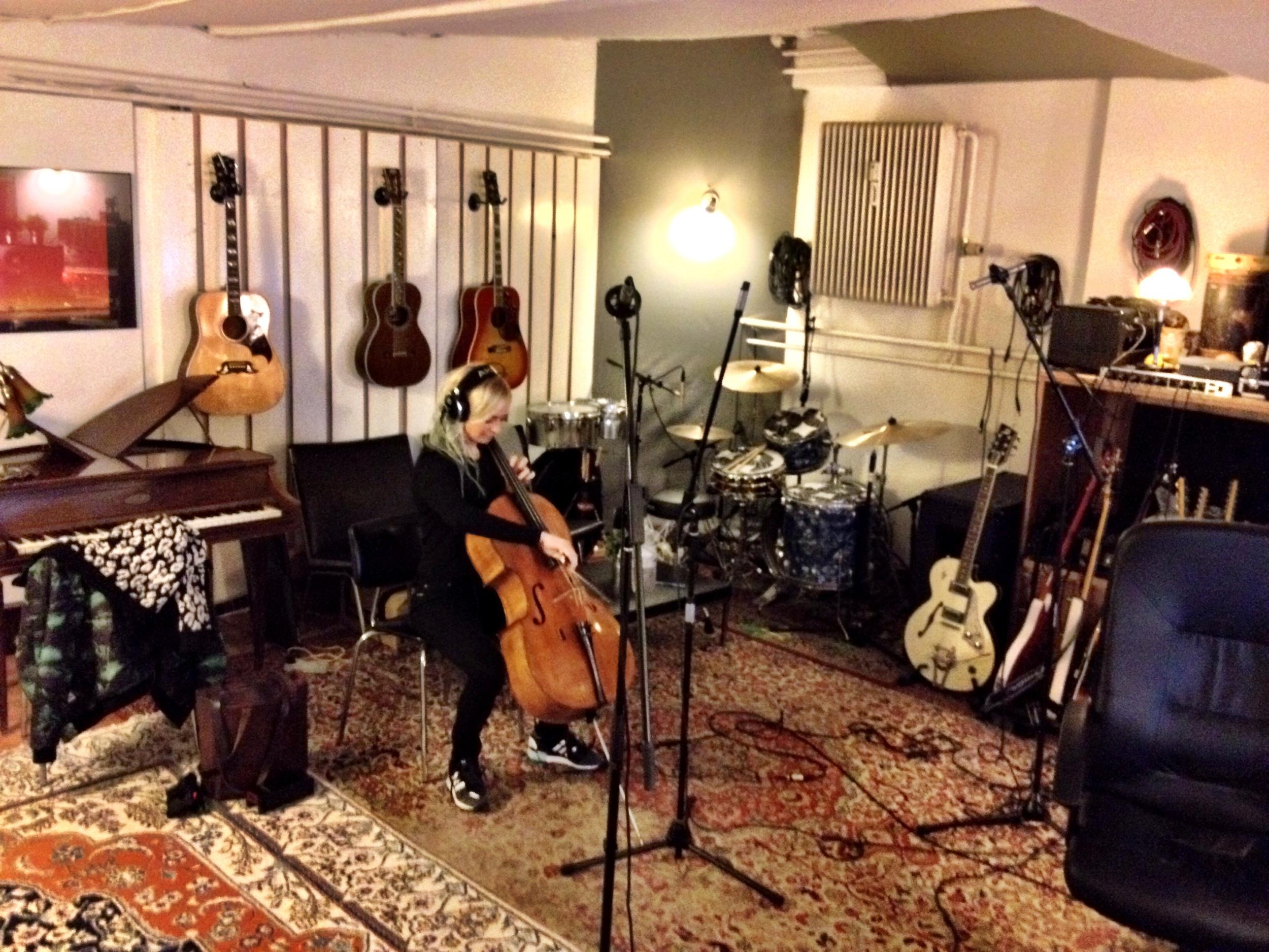 _live solo studio birk n.JPG