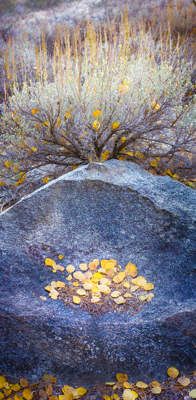 grant-longenbaugh-Eastern-Sierra-20.jpg