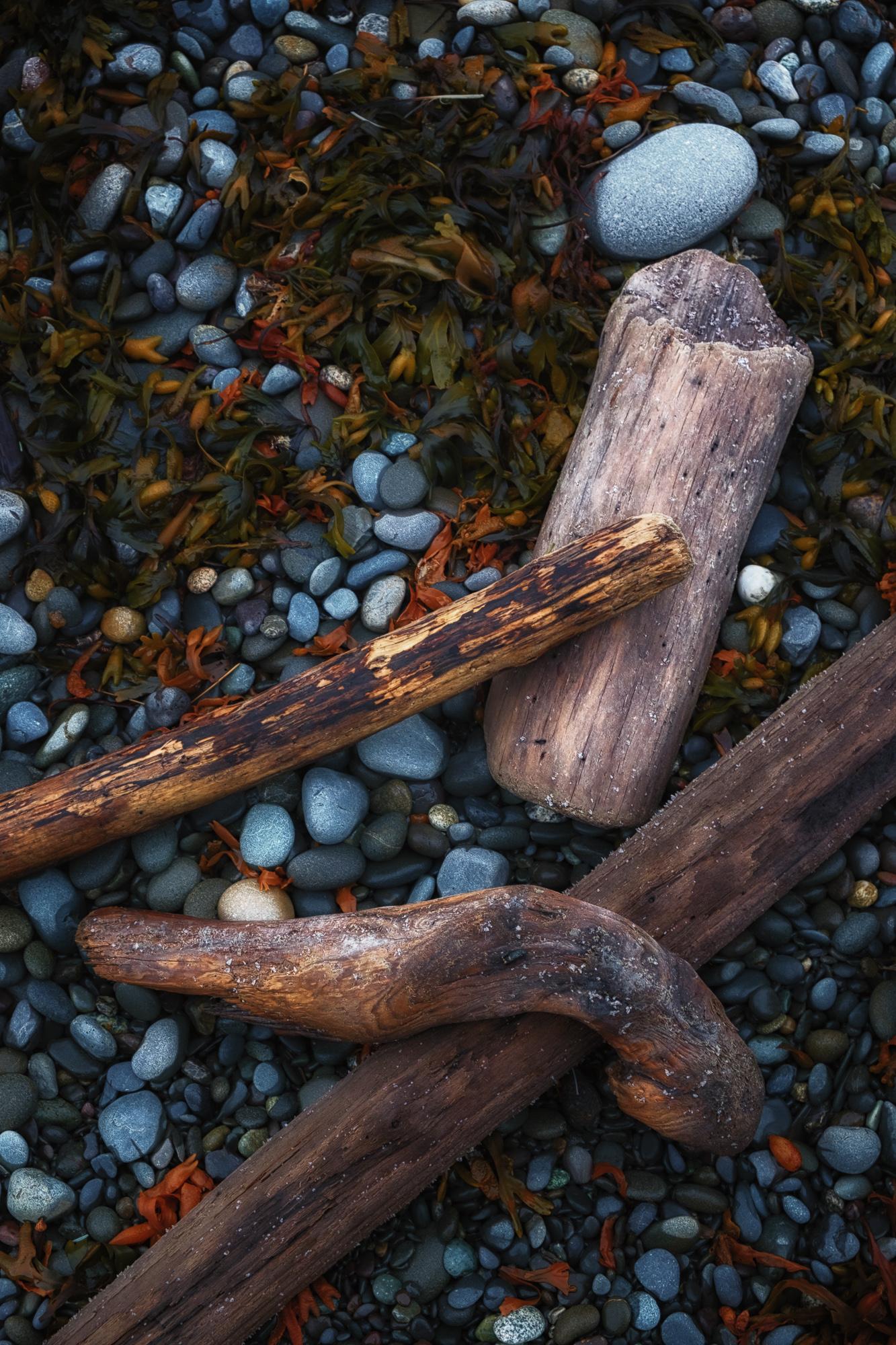 Longenbaugh-olympic-national-park-12.jpg