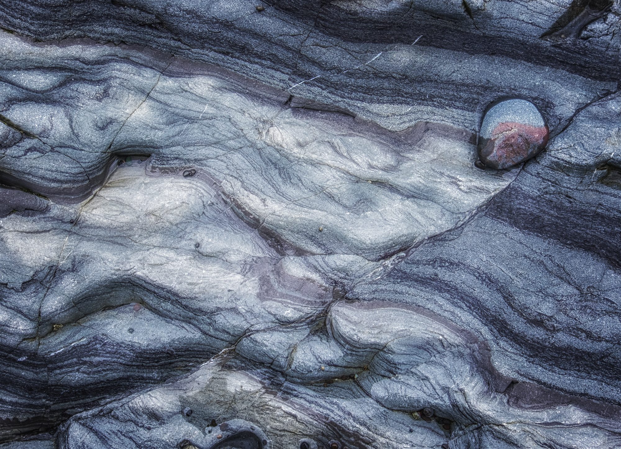 Longenbaugh-olympic-national-park-19.jpg