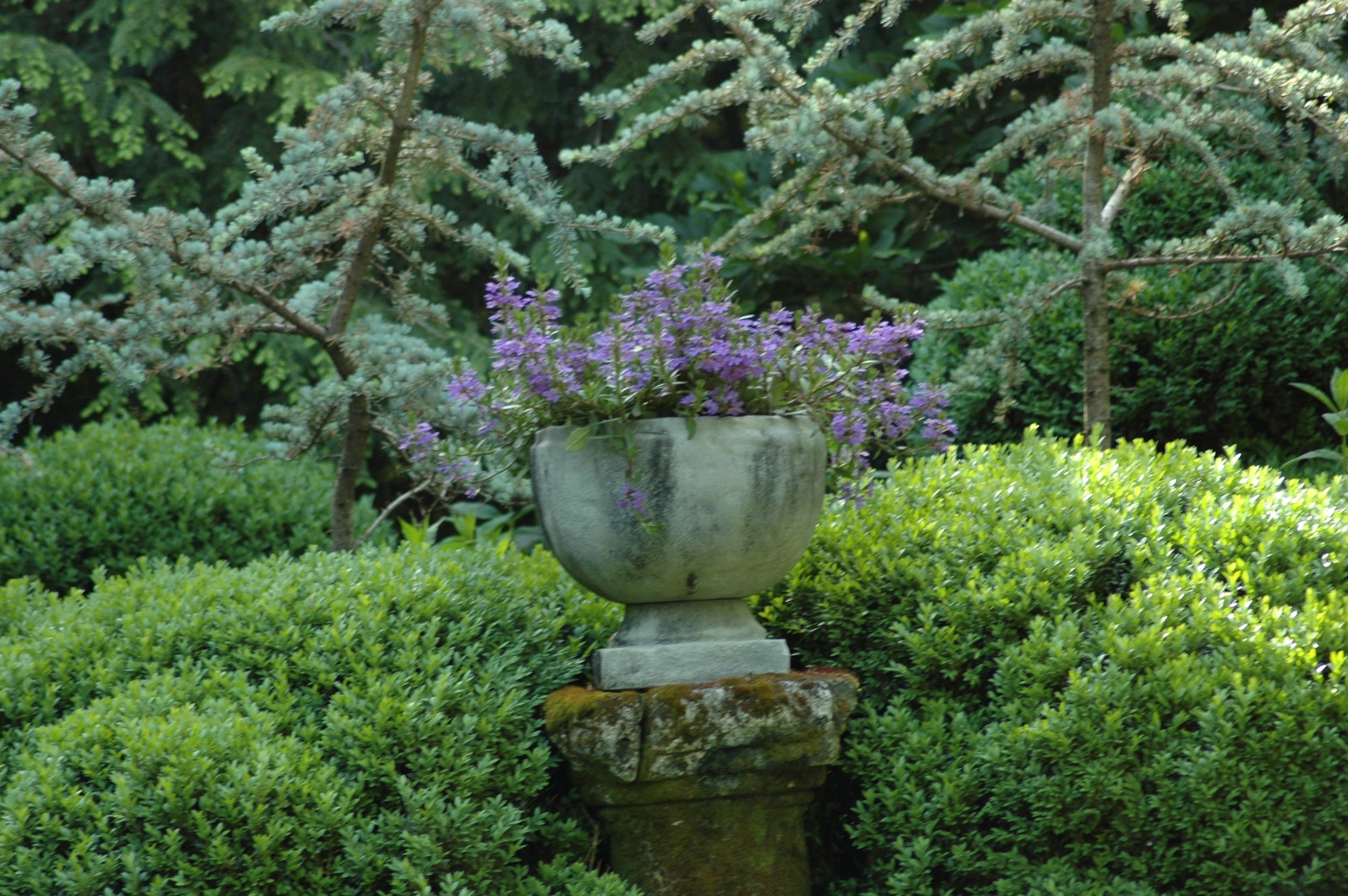 stone planter on column.jpg