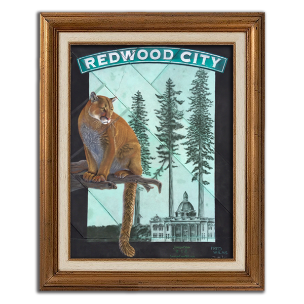 Redwood City Mountain Lion