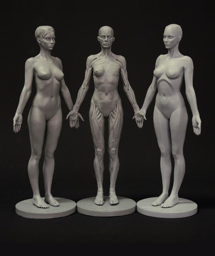 Body Figure Art