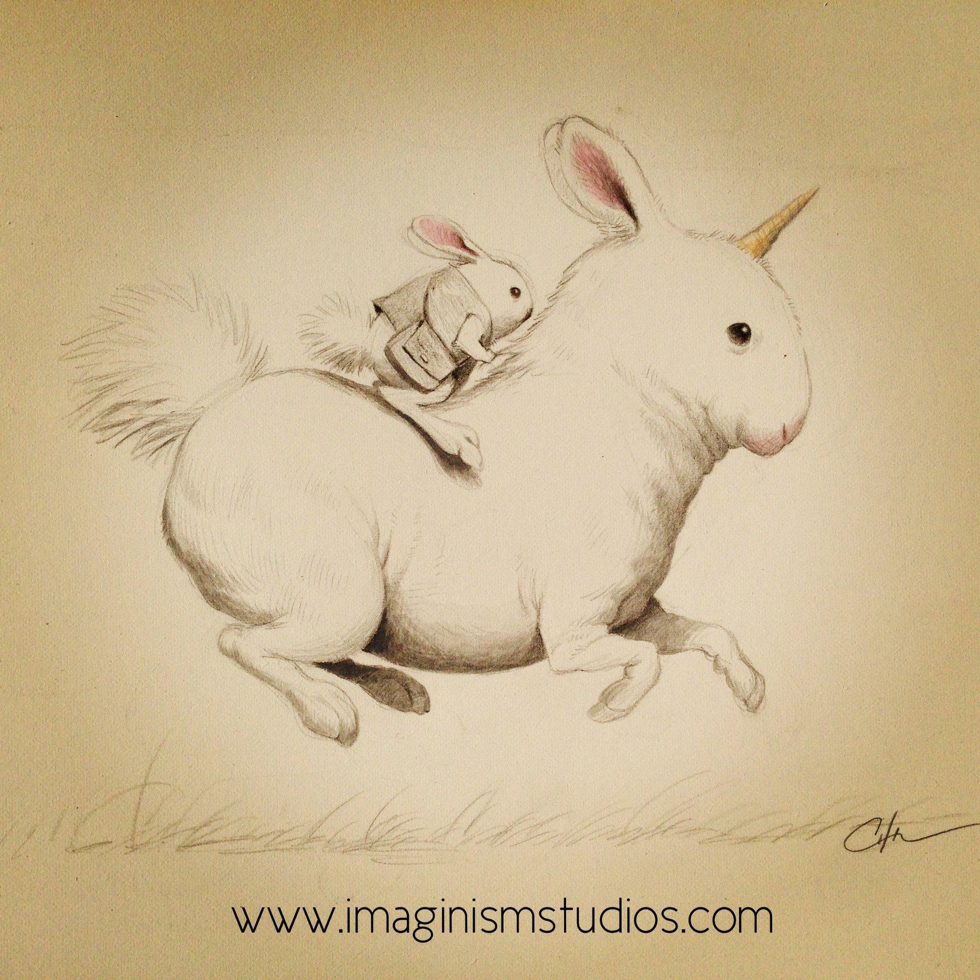 bobby-chiu-bunny-riding-bunny-unicorn-by-imaginism-d69fhrq.jpg