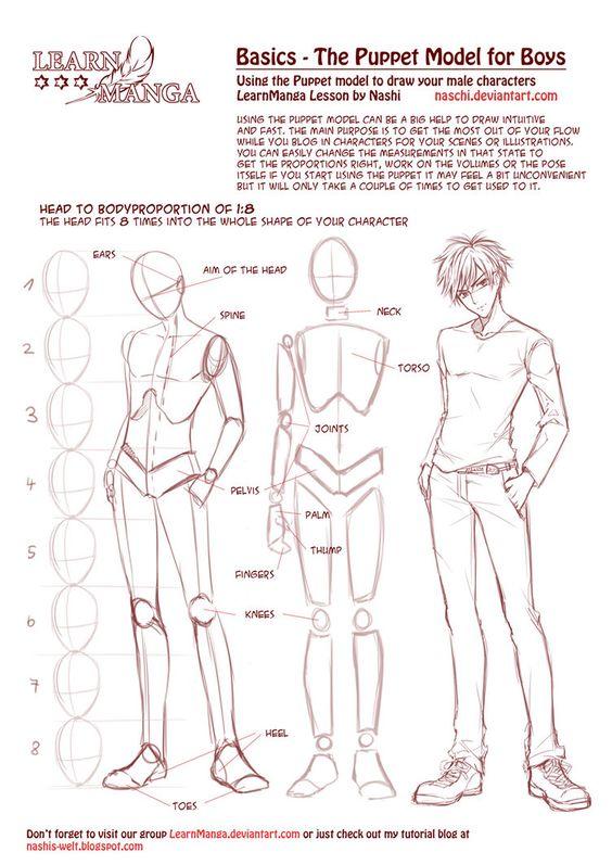 https://www.pinterest.ie/characterdesigh/character-anatomy-male/