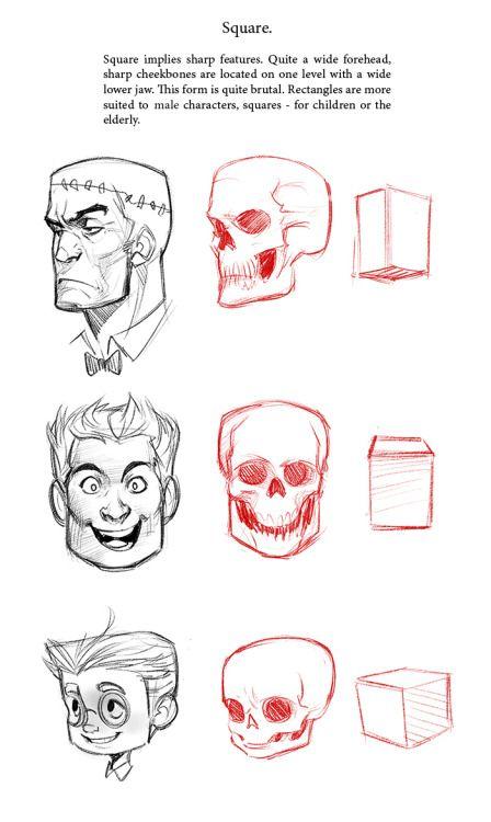 https://www.pinterest.ie/characterdesigh/character-anatomy-head/
