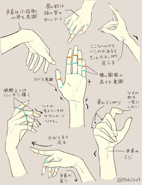 https://www.pinterest.ie/characterdesigh/character-anatomy-hands/