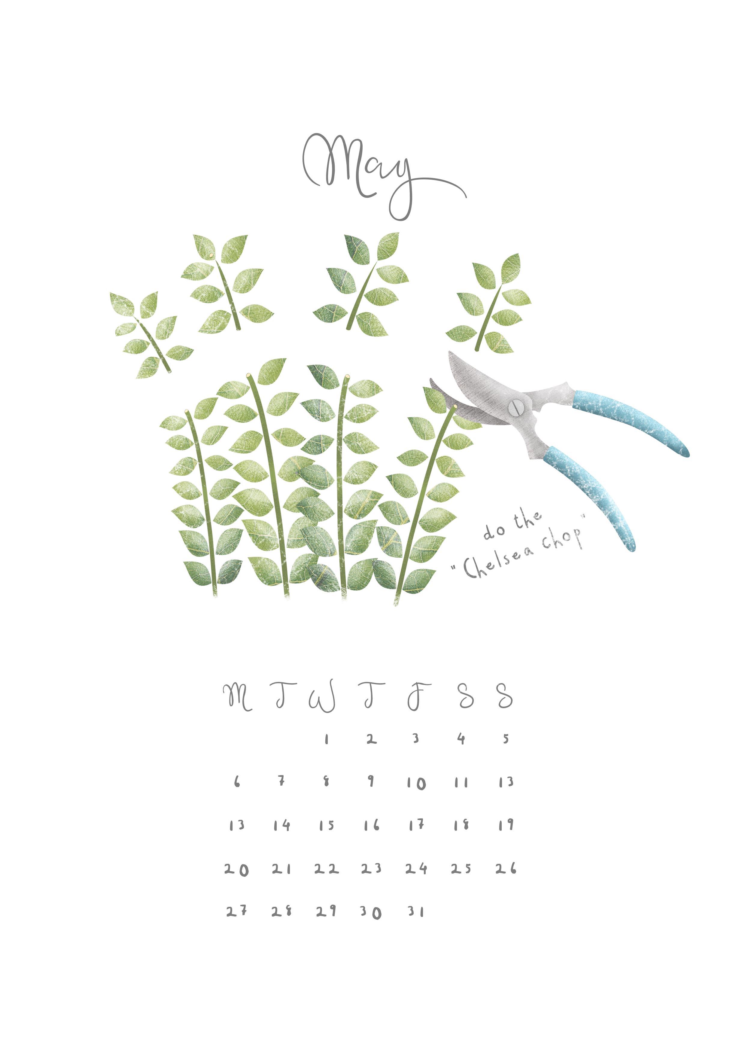 Hannah Weeks Illustration - May - Chelasea Chop - A4 copy.jpg