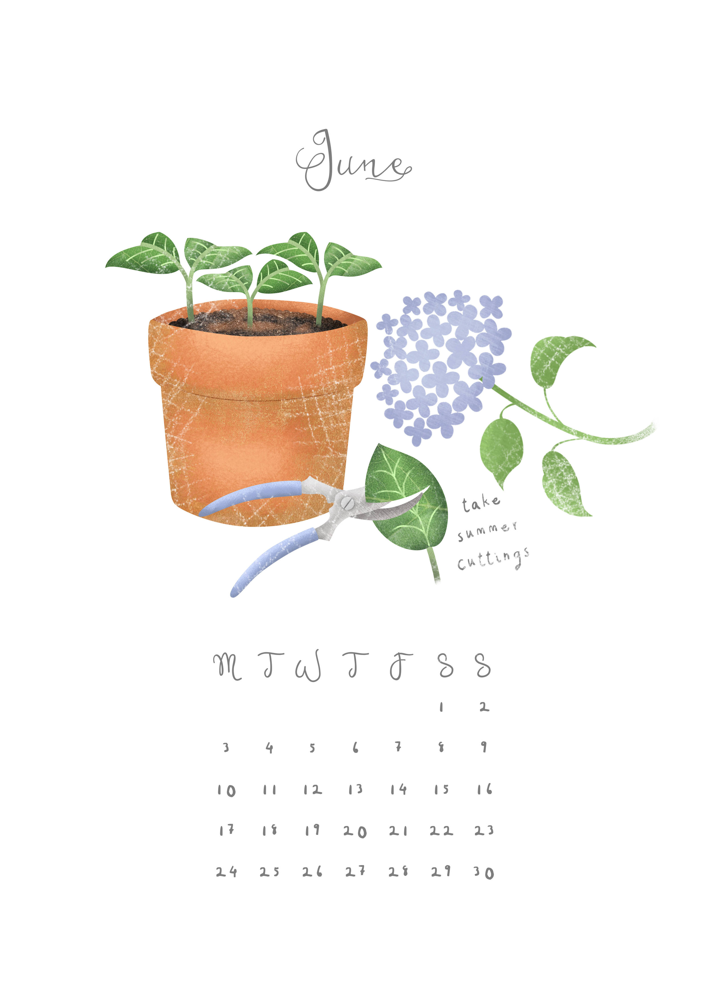 Hannah Weeks Illustration - June - Summer Cuttings - A4.jpg