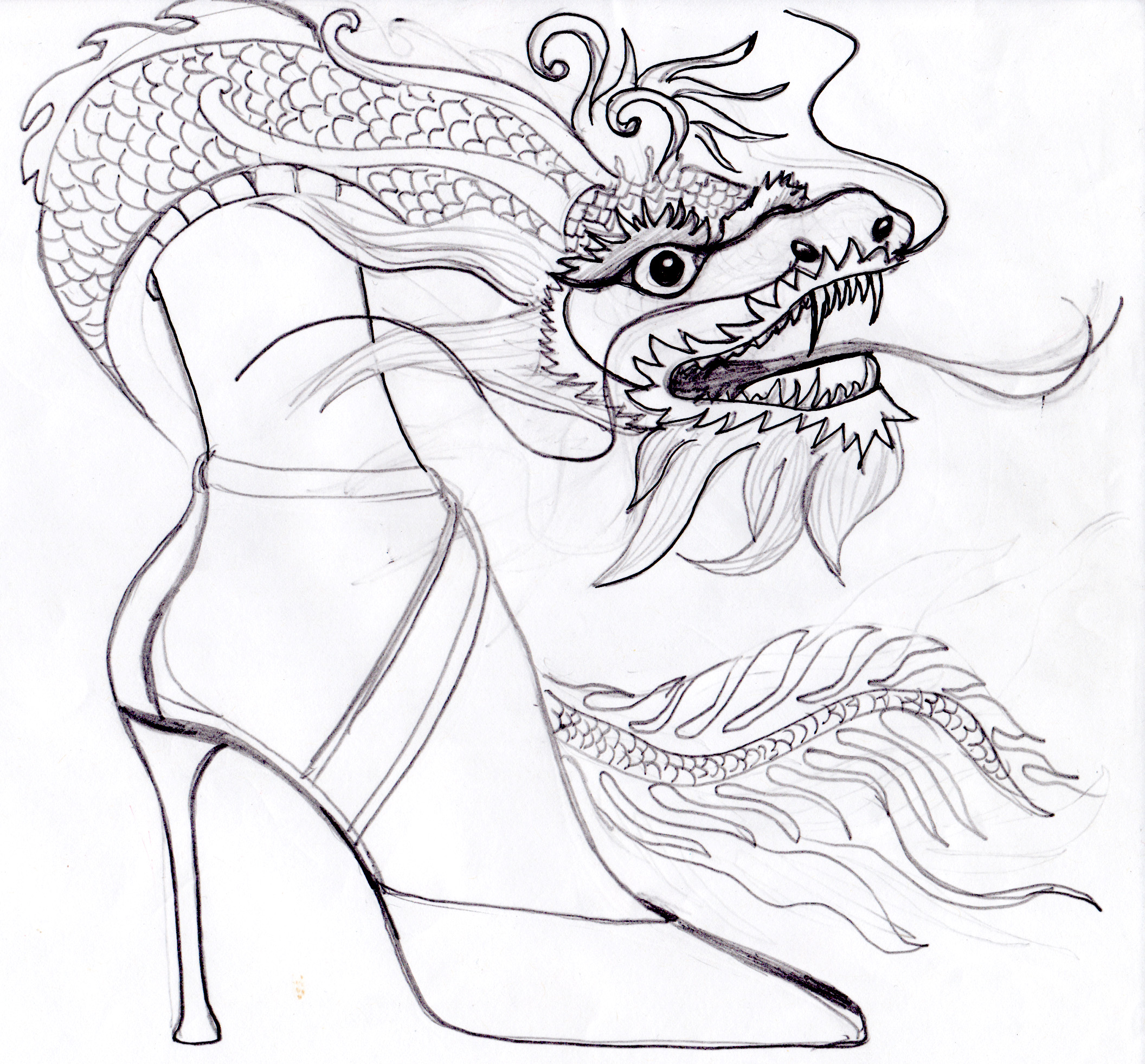 dragon shoes.jpg