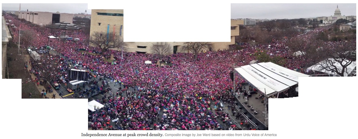 Composite image of Women's March in DC by Joe Ward published in the New York Times