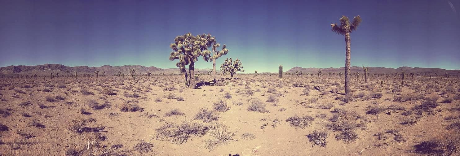 American desert edited.jpg