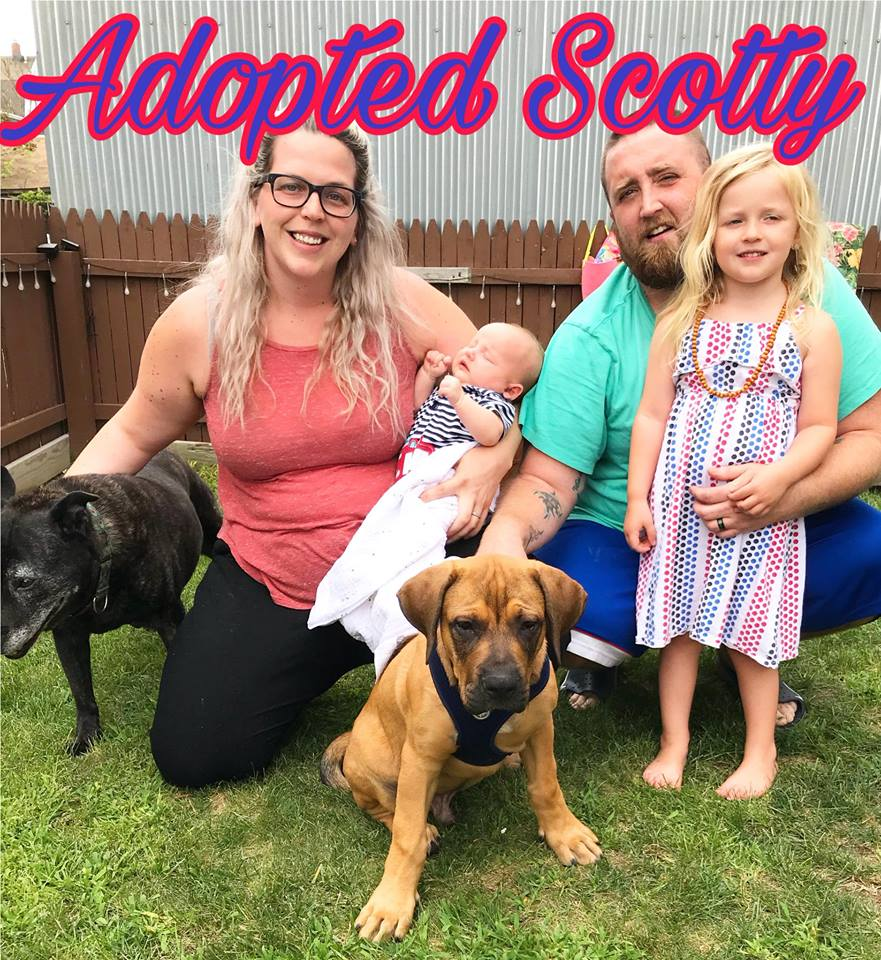 AdoptedScotty.jpg